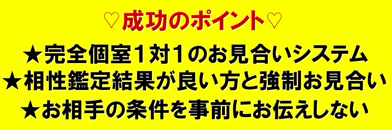 東京での婚活成功の秘訣は、お互いの条件(容姿・年齢・年収)を知らせず強制的にお見合いをして頂く点です。