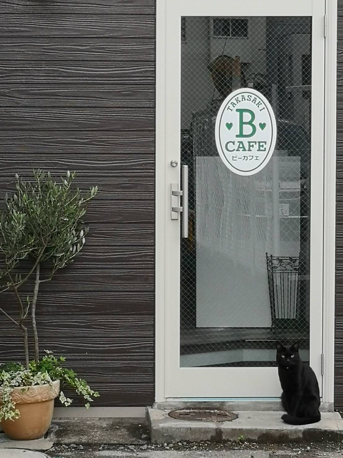 群馬県高崎市の猫が遊びにくる占い館BCAFE(ビーカフェ)群馬高崎店!まるで「猫カフェ」のような占い館です
