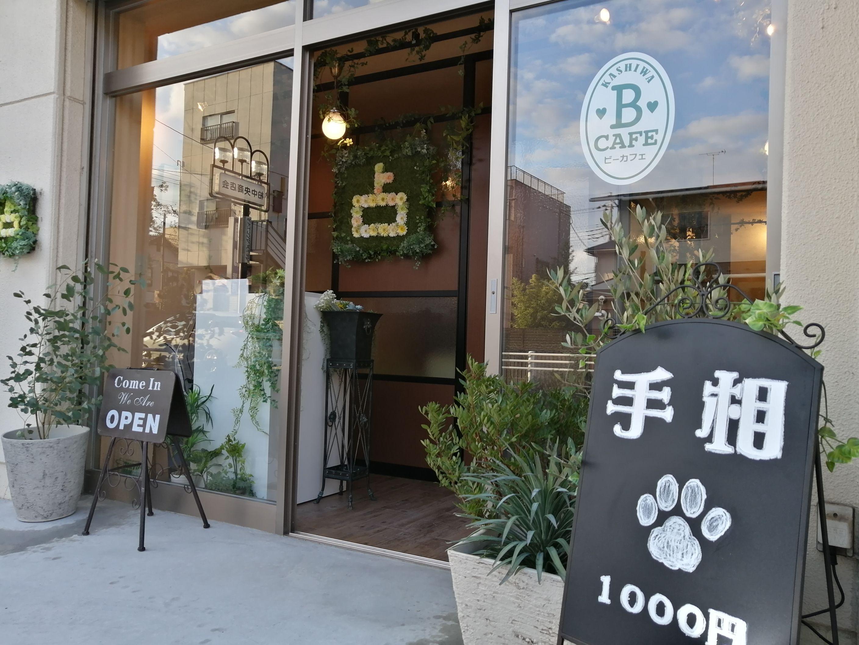占い師募集【渋谷・高崎・柏】業界では珍しい月給保証有の占い師システム。安心して勤務できます